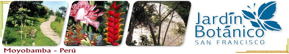 Sangapilla for Jardin botanico san felipe